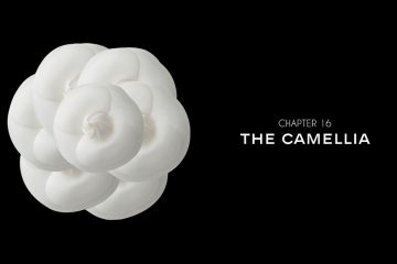 Chapter 16 the Camellia